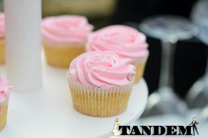 CandyBar3-4